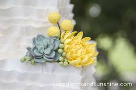 sugar succulents on a wedding cake succulents and sunshine