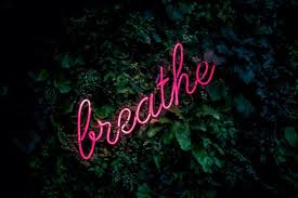 wallpapers for 10 amazing desktop wallpapers for neon sign lovers her cus