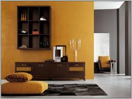 living room colors for dark furniture interior design