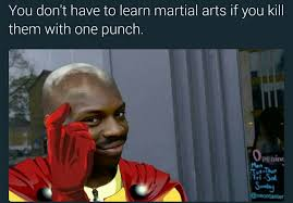 Martial Arts Memes - don t have to learn martial arts if you kill them in one punch