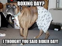 Funny Boxing Memes - boxer day what breed is it