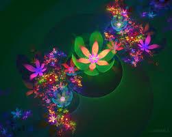 wallpaper bunga lingkaran wallpaper ilustrasi penerbangan pohon natal lingkaran lu