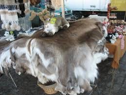 tappeti di pelliccia scambio cedo 2 tappeti di pelliccia renna in arredamento casa