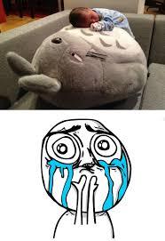 Cuteness Overload Meme - image 367741 cuteness overload know your meme