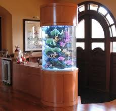 fish tank ornament ideas