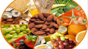 the food lovers fat loss system explained video dailymotion