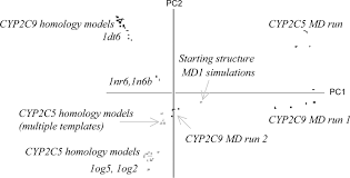 structural analysis of cyp2c9 and cyp2c5 and an evaluation of