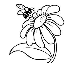 bee flower drawing