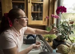 Minnesota travel visa images State immigrant crime victims find disparities in visa program jpg