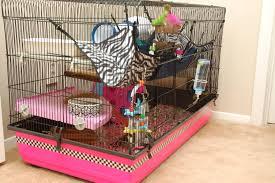 Large Ferret Cage The Ferret Kit Cage 100 Hammy Happenings