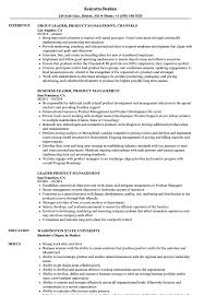 Leadership Resume Template Leader Product Management Resume Samples Velvet Jobs