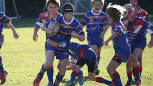 bomaderry swamp rats score plenty of tries south coast register