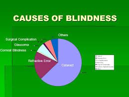 Can Color Blindness Be Prevented Facts Avoidable Blindness Has Been Defined As Blindness That Could
