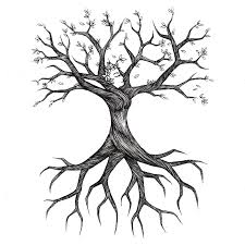 tree with roots and branches clipart 41