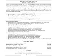 free resume format for accounts executive job role awful resume format for accountsive account it cover letter sle