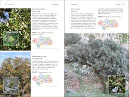 native plants of africa wild plants of southern spain a guide to the native plants of