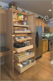 slide out drawers for kitchen cabinets shelves awesome top pull out shelves for kitchen cabinets pantry