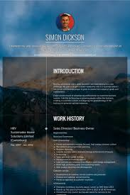 Business Owner Resume Example by Sales Director Resume Samples Visualcv Resume Samples Database