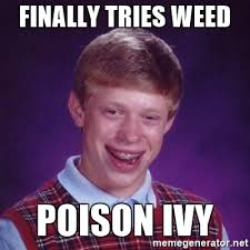 Poison Ivy Meme - finally tries weed poison ivy bad luck brian meme generator