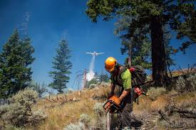 Bc Active Wildfires by Thefts Of Firefighting Equipment Hinder Efforts Against B C