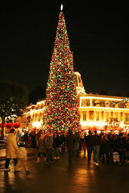 67 best disneyland during the holidays images on