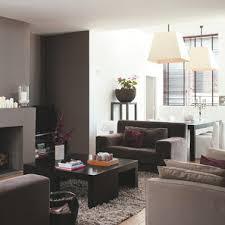 salon gris taupe et blanc 30 idées peinture salon aux couleurs tendance deco cool