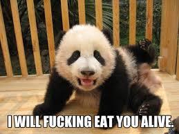 Sad Panda Meme - that makes me a sad panda meme google search animals pinterest