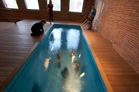 moma ps1 exhibitions leandro erlich swimming pool