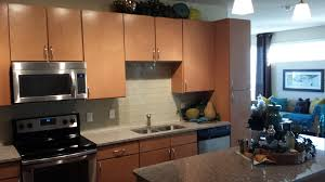 Building Frameless Kitchen Cabinets by The Fame Frameless Kitchen Cabinets Dream House Collection