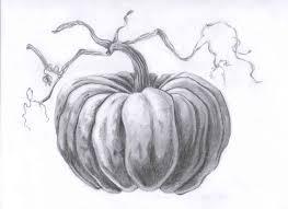 pumpkin drawing thanksgiving pinterest pumpkin drawing