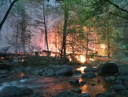 Wildfire Western Us by The Wayne Goes West Local Firefighters Help Tackle Wildfires In