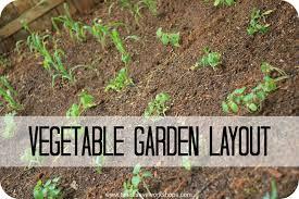 how to layout a vegetable garden garden ideas