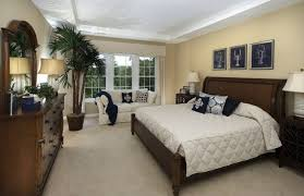 Bedroom Crown Molding Bedroom Extraordinary Traditional Master Bedroom Blue Exquisite