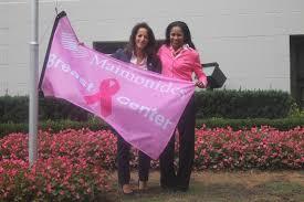 Breast Cancer Flags Img 1322 Jpg