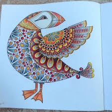 puffin from wonders of creation coloring book coloring 4
