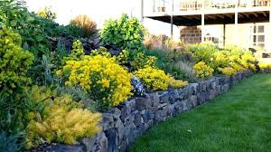 Border Ideas For Gardens Border Landscaping Ideas Garden Borders Design Garden Edging Ideas