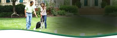 Can You Bury Animals In Your Backyard Pet Fence For Dogs Cats Dog Containment Systems And Fences