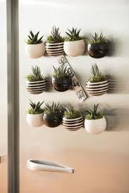 impressive indoor succulent planter 28 indoor succulent planter