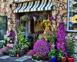 florist shop positano flower shop photograph by jon berghoff