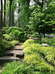 321 best new garden images on pinterest landscaping ideas