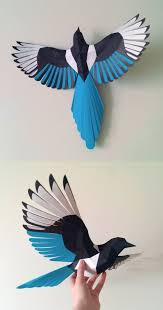 best 25 magpie ideas on pinterest birds pictures with names