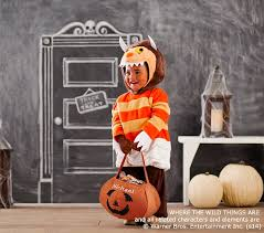 3t Halloween Costume Wild Monster Halloween Costume 2 3t
