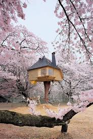 941 best tree houses images on pinterest treehouses