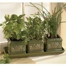 Indoor Herb Garden Kit Indoor Herb Gardening Advice U0026 Resources