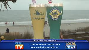 landshark bar u0026 grill dining tip youtube