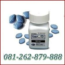 obat kuat pria viagra asli pil biru usa 100mg agen vimax