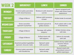 16 paleo zone diet food list health issues amp illnesses