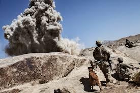 belgian shepherd us army the dogs of war u2014 adam ferguson