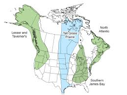 Canada On The Map by Canada Geese Flyways Us