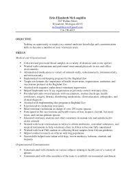 Job Skills For Resume by Ielchrisminiaturas Com Wp Content Uploads 2016 10